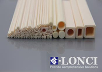 C530 and C610 Mullite Temperature Resistance Anti Corrosion Ceramic Tubes